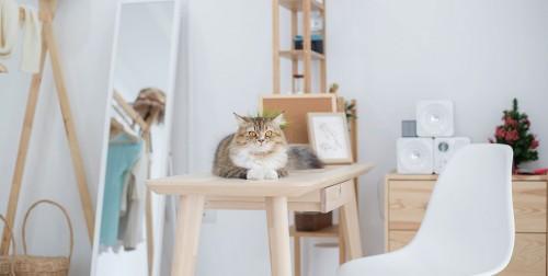 10 porad małego mieszkania